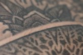 Thomas Hooper Tattooing (116 of 170)